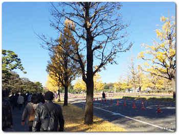 東京駅から皇居へ.JPG